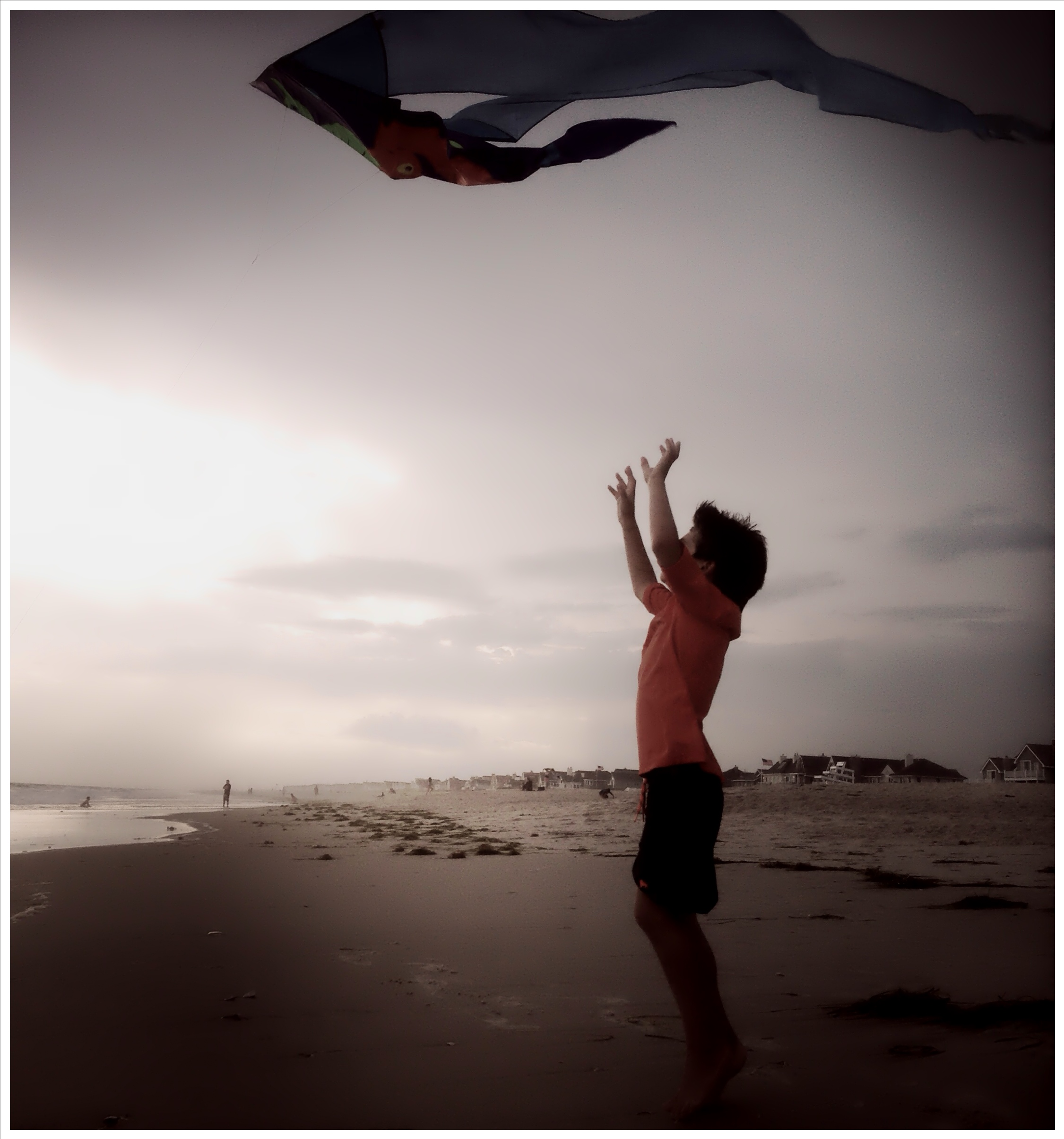 Boy Reaching for Kite