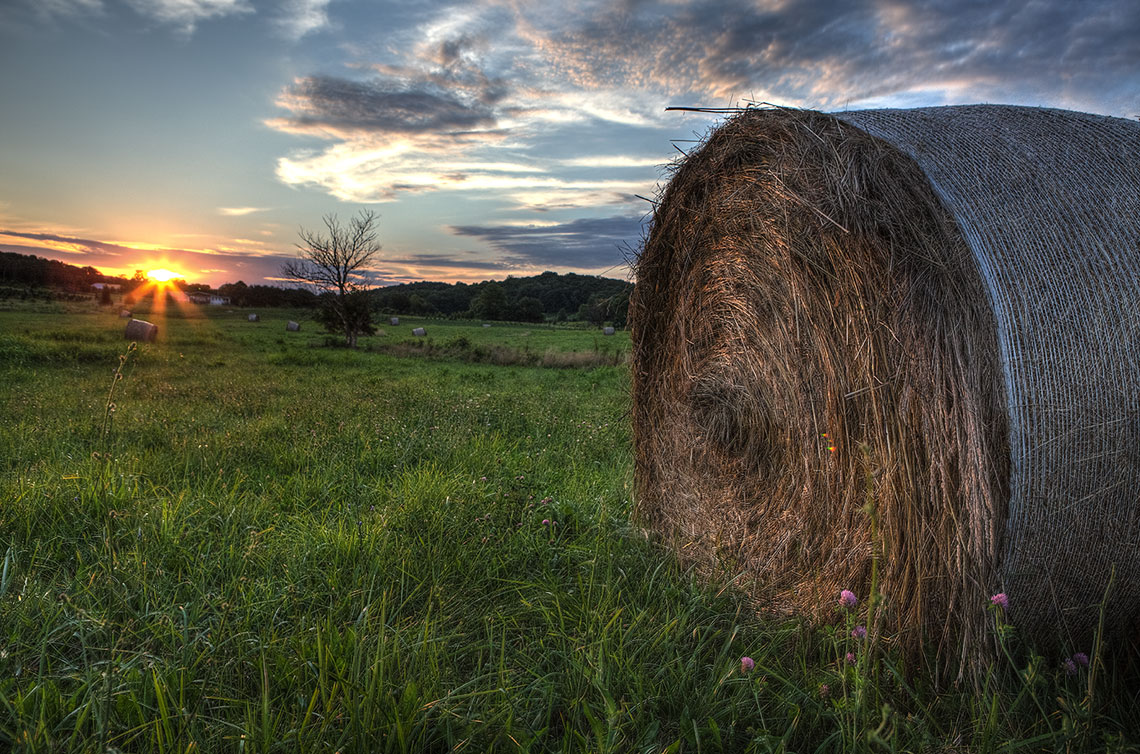 Bale of Hay in field at sunrise Barnwood Builders DIY Network
